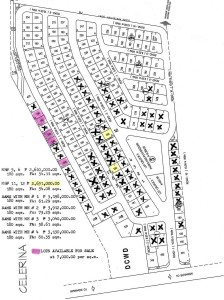 Updated-Map-Lot-and-House-and-Lot-For-Sale-at-Celerina-Heights-Buhangin-Davao-City