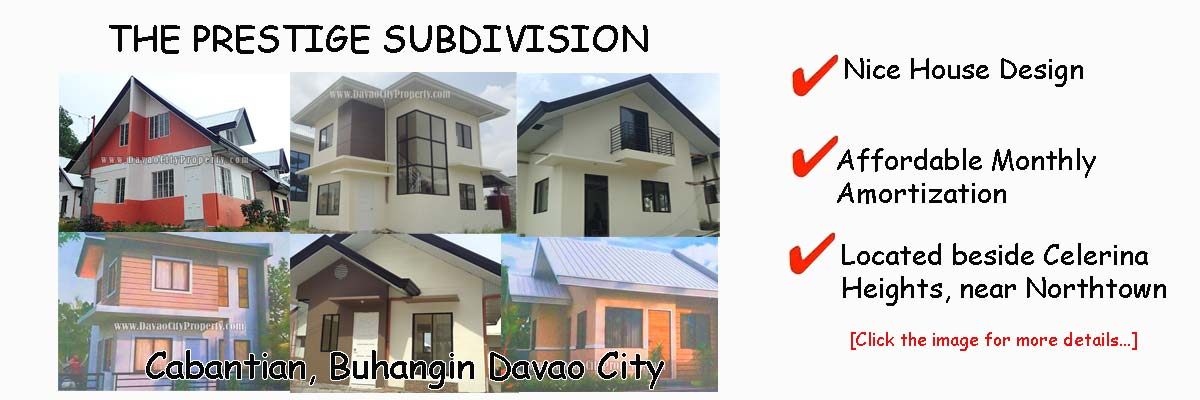 THE PRESTIGE SUBDIVISION Cabantian Buhangin Davao City
