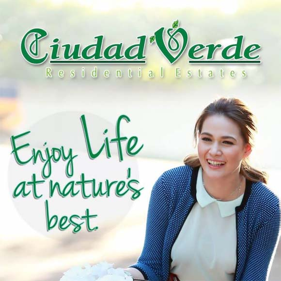 lot for sale at ciudad verde davao city