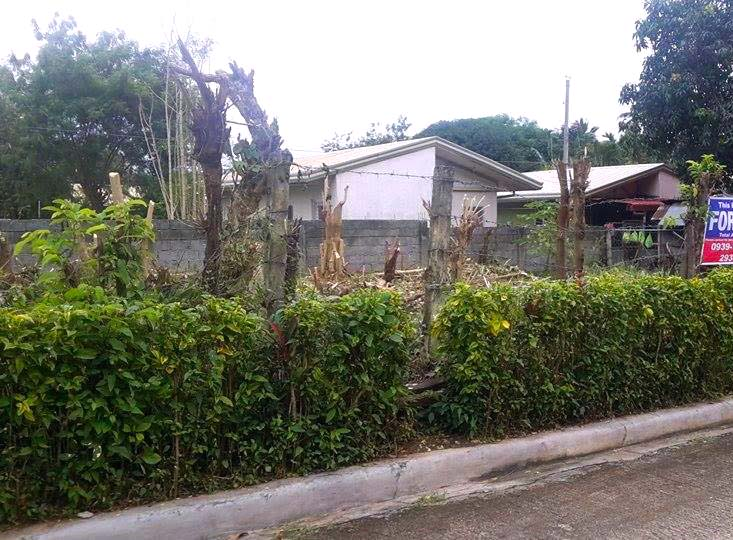 lot-for-sale-at-elenita-heights-davao-city