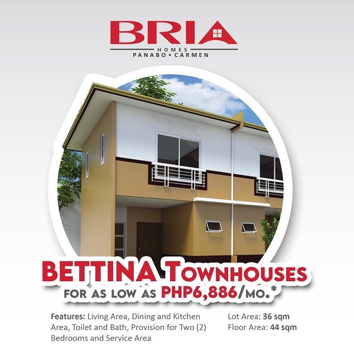 house and lot for sale at bria homes panabo carmen davao